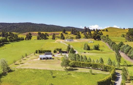2355 State Highway 63 Wairau Valley