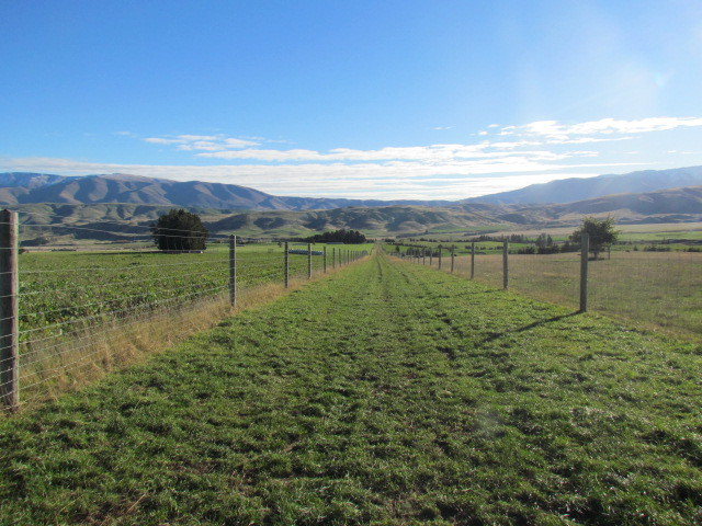 840 Moorland Settlement Road, Kurow