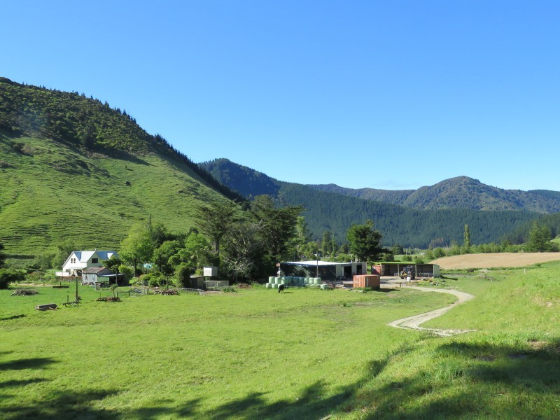 179 Tunakino Valley, Rai Valley