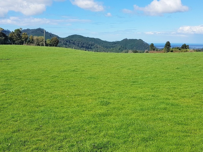 744 Woodlands Road, Waihi