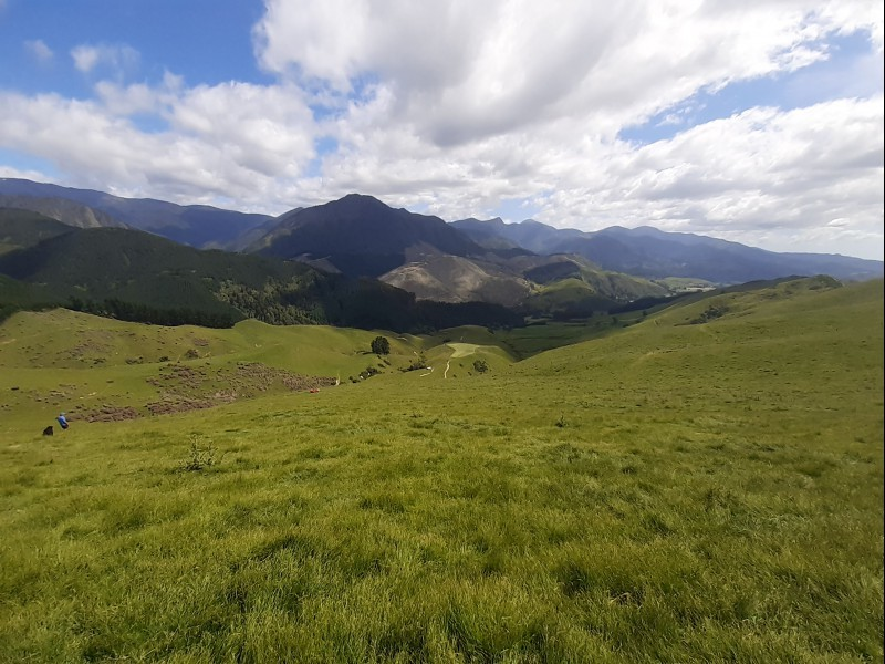 Pearse Valley Road South, Motueka Valley