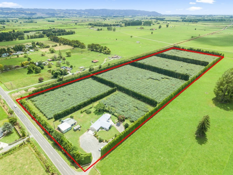 72 Otakiri Road, Edgecumbe