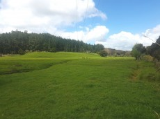 Kirikopuni Valley Road, Dargaville Surrounds