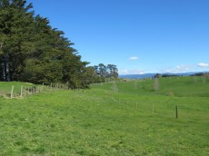Taihape Road, Sherenden